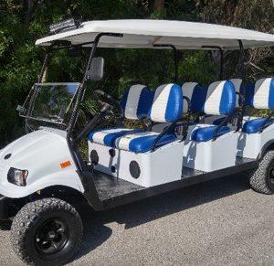 6 Passenger Custom Golf Cart