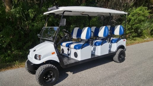 6 Passenger Custom Golf Cart